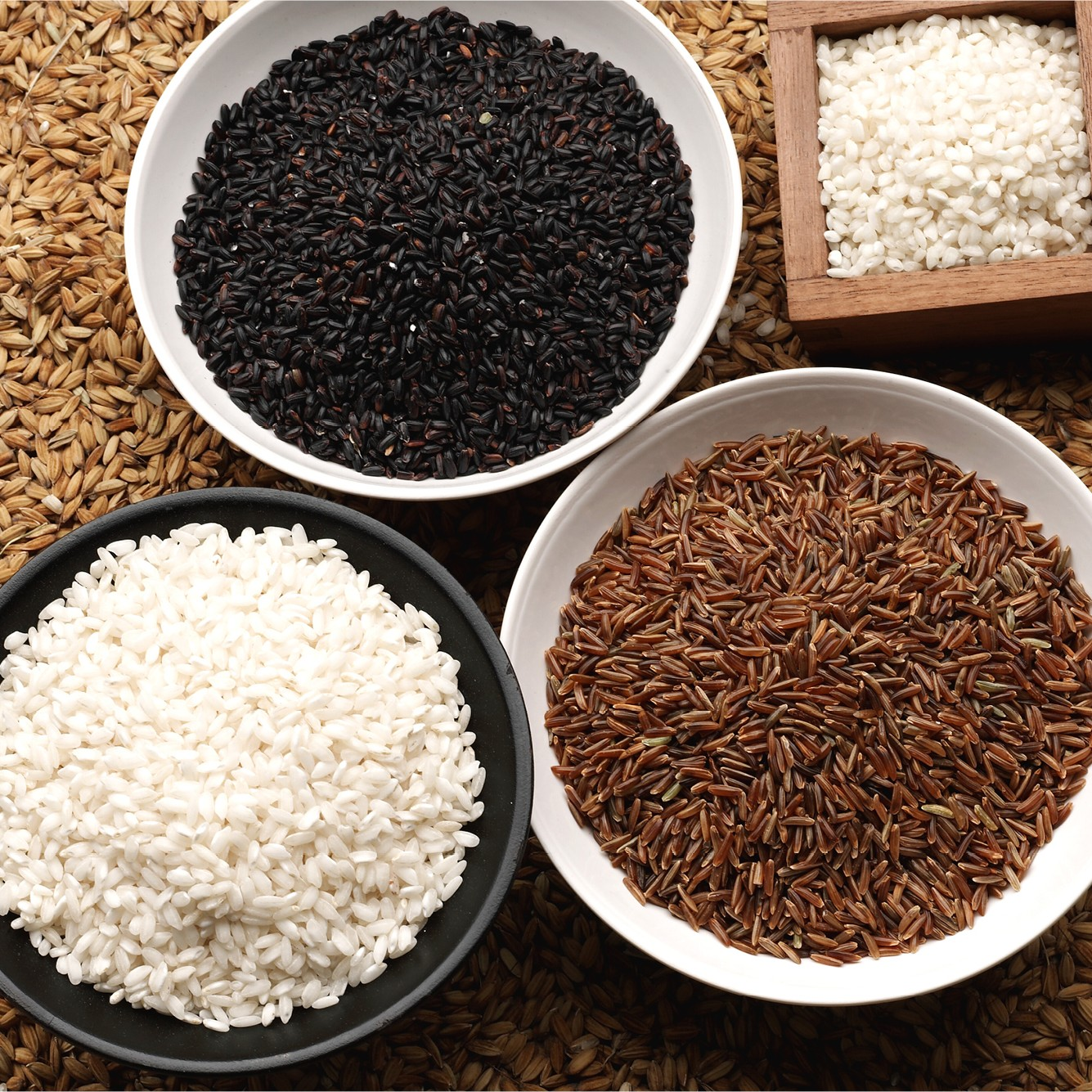 Il riso gliAironi